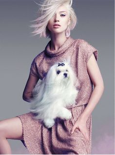 Inspiration for artists from Wildfox Couture; short hair, pastel hair