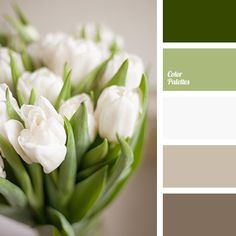 Color Palette #3754