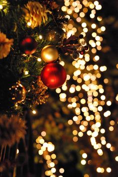 Are you looking for ideas for christmas wallpaper?Check this out for cool Christmas inspiration.May the season bring you peace. Diy Christmas Lights, Gold Christmas Decorations, Christmas Mood, Merry Little Christmas, Noel Christmas, Office Christmas, Magical Christmas, Elegant Christmas, Christmas Ideas