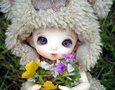 My Pukifee Flora