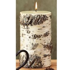 Birch Bark 4x7 Pillar