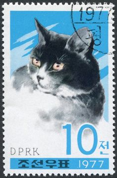 The cats and dogs on North Korea& stamps – in pictures I Love Cats, Crazy Cats, Cute Cats, Cat Paws, Dog Cat, Japanese Cat, Postage Stamp Art, Vintage Stamps, North Korea