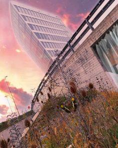 "Gefällt 0 Mal, 0 Kommentare - lauper bruno (@crosswind_on_u2be) auf Instagram: ""#Surealscenery Zürich Airport 10.11. 2020 • #pixaloop #butterfly #cloudlapse #fakesky #fakemotion…"" Flyer, Skyscraper, Music Videos, Aviation, Multi Story Building, Instagram, Skyscrapers, Air Ride, Aircraft"