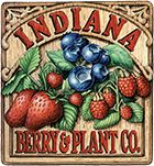 Bare Root Strawberry Plants | Blueberry Plants for Sale | Indiana Berry - Plymouth, IN goji berries