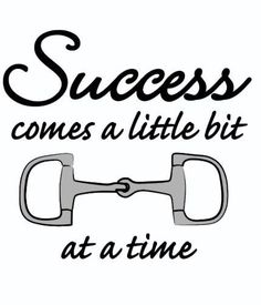 "Success comes a little ""bit"" at a time."