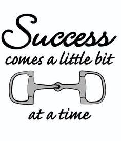 """Success comes a little """"bit"""" at a time."""