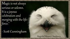 Owls have been a constant in my life over the last month.  I believe they have some wise words to tell me...and the words of one who I have great respect will serve me well. Blessings, Scott Cunningham, your words are missed