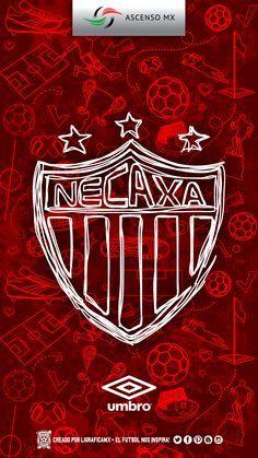 #Necaxa #LigraficaMX ·131114CTG