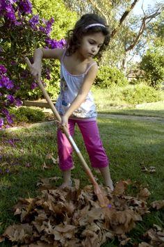 Twigz Leaf Rake - hardtofind. #hardtofind #outdoor #gifts