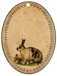 bunnyoval3.png (900×1200)