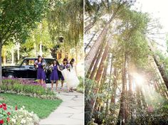 Danielle Gillett Photography Nestldown Redwood Wedding