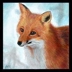 drawn fox