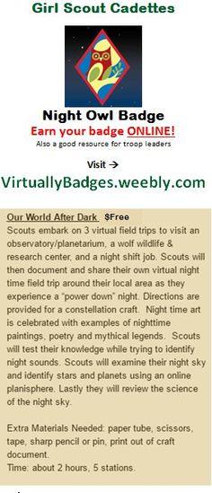 Night Owl Girl Scout Cadette Badge earned online!