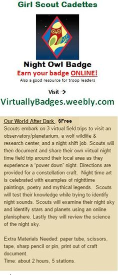 Night Owl Girl Scout Cadette Badge earned online!