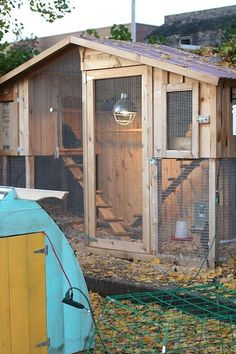Chicken coop by crazy cat woman