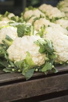 Your container-grown cauliflower will be ready for harvest in spring or late fall.