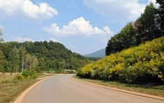 Black Creek is an attractive and pleasant community situated eight miles southwest of downtown Chattanooga, Tennessee. Downtown Chattanooga, Mountain Resort, Resort Style, Luxury Living, New Homes, Country Roads, Real Estate, Urban, Nature