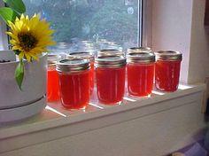 Hot As Hell Habanero Zucchini Jelly Recipe - Food.com
