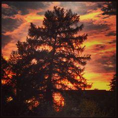 Lieblingswetter: Sonne, Wolken, Wind | Herbst! ☀️☁️⛅️