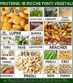 .proteine vegetali