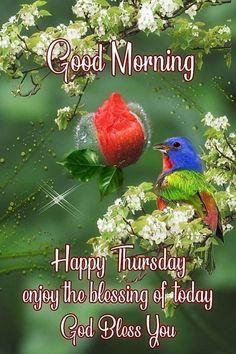Good Morning Happy Thursday, God Bless You, Home Design Plans, English Quotes, Blessed, How To Plan, Blessings, House Design Plans, House Design
