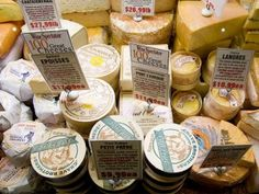Lots of cheese in Sonoma