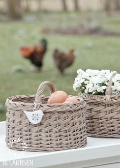 Country Living ~ Basket of Eggs, Neutral Tones Country Charm, Country Life, Country Living, Country Girls, Country Style, Farms Living, Cottage Living, Farm Cottage, Shabby Cottage