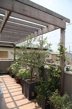バルコニー / パーゴラ / コンテナガーデ / ナチュラルガーデン / ガーデンデザイン / 外構 Garden Design / Balcony / Pergola / Plants