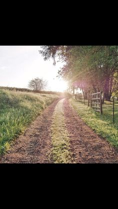 Vineyard, Country Roads, Future, Outdoor, Outdoors, Future Tense, Vine Yard, Vineyard Vines, Outdoor Games