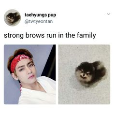 "9,126 Likes, 51 Comments - bts memes + videos  (@gguk.ah) on Instagram: ""YEONTAN IS SO CUTE IM IN LOVE"""