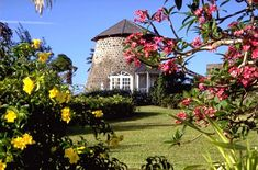 Sugar Mill at Rawlins Plantation Inn in St. Kitts  VISIT Beautiful sugar mills!#SandorCityContest: St Kitts #TravelBrilliantly @St.Kitts Marriott Resort  @Marriott Resorts