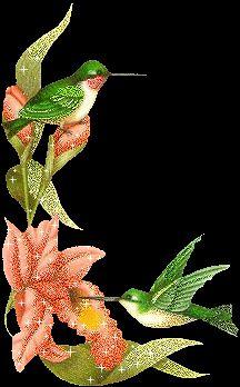 Hummingbird glitter gifs