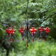 Love this hummingbird feeder. From Parasol hummingbird feeders