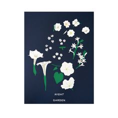 """This new screenprint features flowers that bloom only at night! Counterclockwise from the lower left are datura wrightii, ipomoea alba (both colloquially called """"moon flower""""), single tuberose, California evening primrose, and night phlox. Hand printed in 8 colors on recycled midnight blue cover-stock paper. Because they are hand-pulled, each print is unique.  Edition of 180, stamped and numbered, 25x19"""""""
