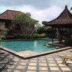 Nirwa Ubud Homestay (Indonesia) recommended!