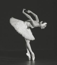 "tanaquilleclercq: "" Svetlana Zakharova in Fokine's The Swan. Photo by (? Ballet Poses, Ballet Art, Ballet Dancers, Dance Photos, Dance Pictures, Ballet Photography, Portrait Photography, Svetlana Zakharova, Natalia Romanova"