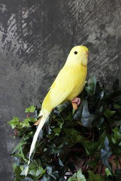 Yellow Budgie - A Fabulous Artificial Bird