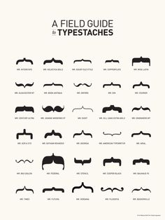 关于胡子,关于括弧