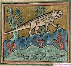 medieval bestiary - Szukaj w Google