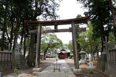 千曲市の武水別神社は「やわたの八幡さん」と呼ばれ親しまれている神社です。-Takemizuwake Jinja (Chikuma City,Nagano)- とても大きな本殿は立川流2代目富昌が手掛け、拝殿は富昌が後見をして、峰村弥五郎が手掛けたものです。 1850年から1856年に建てられた両社殿と、16世紀に建てられたという県宝の摂社高良社が祀られています。