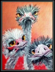 3 Crazy Ostrich Diamond Painting Source by martialmouret Cross Paintings, Animal Paintings, Bird Drawings, Animal Drawings, Painting & Drawing, Watercolor Paintings, You Draw, Whimsical Art, Bird Art