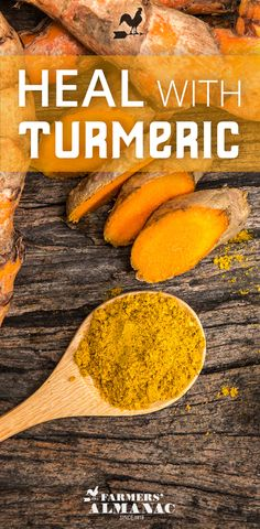 Heal With Turmeric! - Farmers' Almanac - You may know that turmeric is a common spice in many ethnic cuisines (it's what gives Indian curries their bright, yellow color), but you may not know that this versatile south Asian botanical has been revered for thousands of years for its medicinal properties. #turmeric #spice #healing