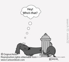 Doxie Cartoon