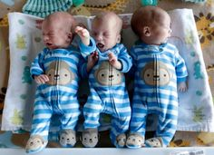 The Kinsey Triplets of Miles City, Montana. (L to R) Ian, Cade and Milo.  These adorable, identical boys were born on December 5, 2014 in Billings, Montana to Jody and Jase Kinsey.  The healthy babies were about 7 weeks premature.  They have a 6-year-old brother, Jax.