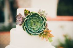 Succulent Cake Decor | See More On SMP: http://www.stylemepretty.com/2013/11/20/modern-malibu-wedding-from-zoom-theory | Photo - Zoom Theory