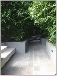 Outdoor tiles put to beautiful use in Inner city bamboo courtyard. Design by Lisa Ellis Gardens in conjunction with Hayball Architects and Mider Pty Ltd. Planting out by Lisa Ellis Gardens October Garden Pavers, Garden Landscaping, Small Gardens, Outdoor Gardens, Outdoor Paving, Raised Gardens, Amazing Gardens, Beautiful Gardens, Paving Pattern