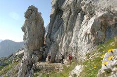 Es müssen nicht immer anspruchsvolle Wanderwege sein - auch Einsteiger finden passende Touren