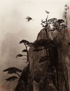 Photographs That Look Like Traditional Chinese Paintings by Don Hong Oai.