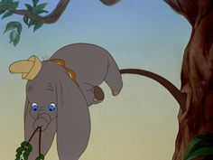 Dumbo in a tree