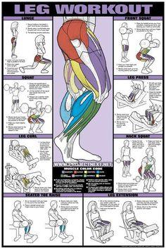 Leg Workout - Lunge Squat Curl Raise Press Exercise Gym